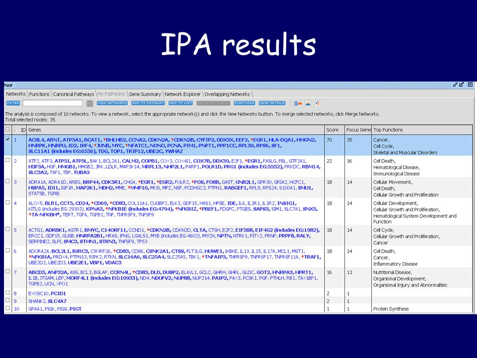 IPA results