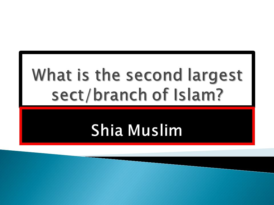 Shia Muslim