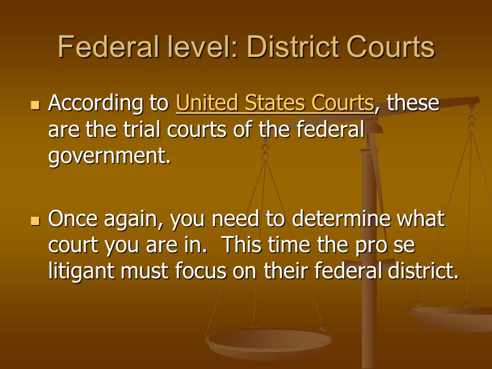 Federal level: District Courts According to United States Courts, these are the trial courts of the federal government.