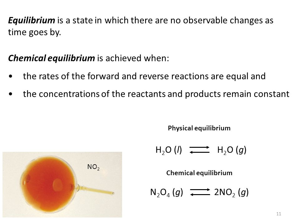 11 Equilibrium is a state in which there are no observable changes as time goes by. Chemical equilibrium is achieved when: the rates of the forward an