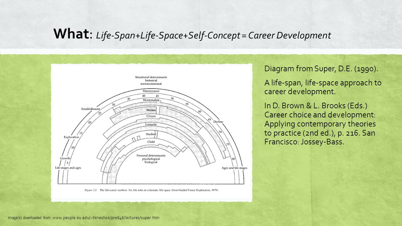 What: Life-Span+Life-Space+Self-Concept = Career Development Diagram from Super, D.E. (1990). A life-span, life-space approach to career development.
