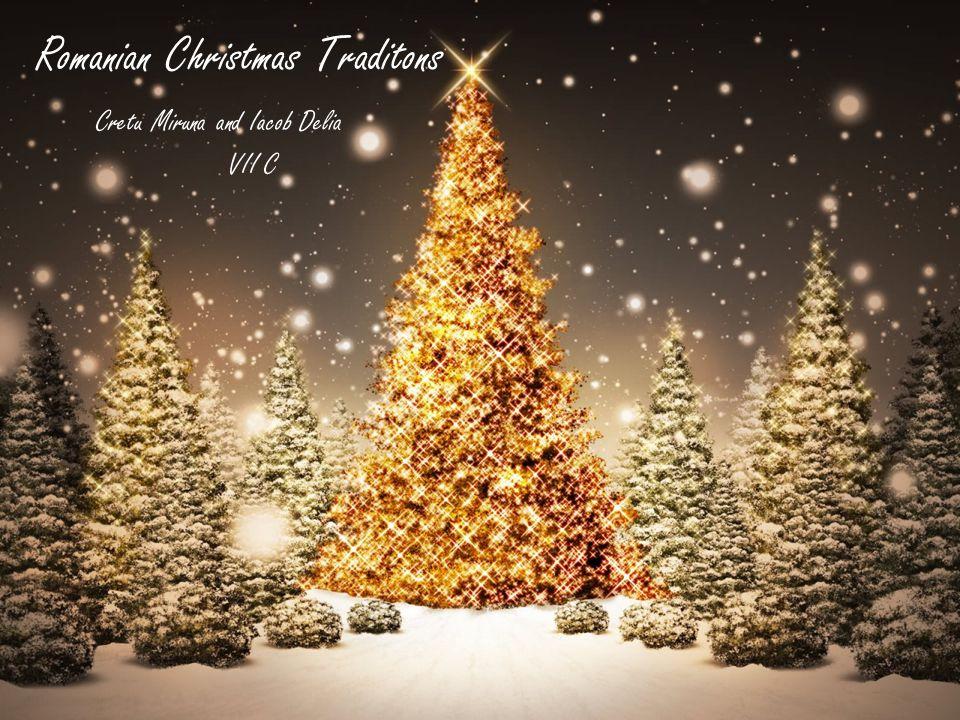 """""""Substituent pentru un citat care va fi animat aici. - Atribuire Romanian Christmas Traditons Cretu Miruna and Iacob Delia VII C"""