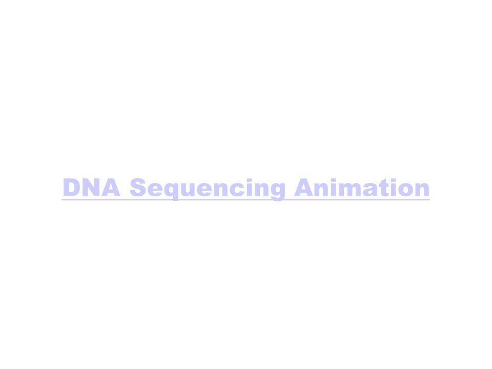 DNA Sequencing Animation