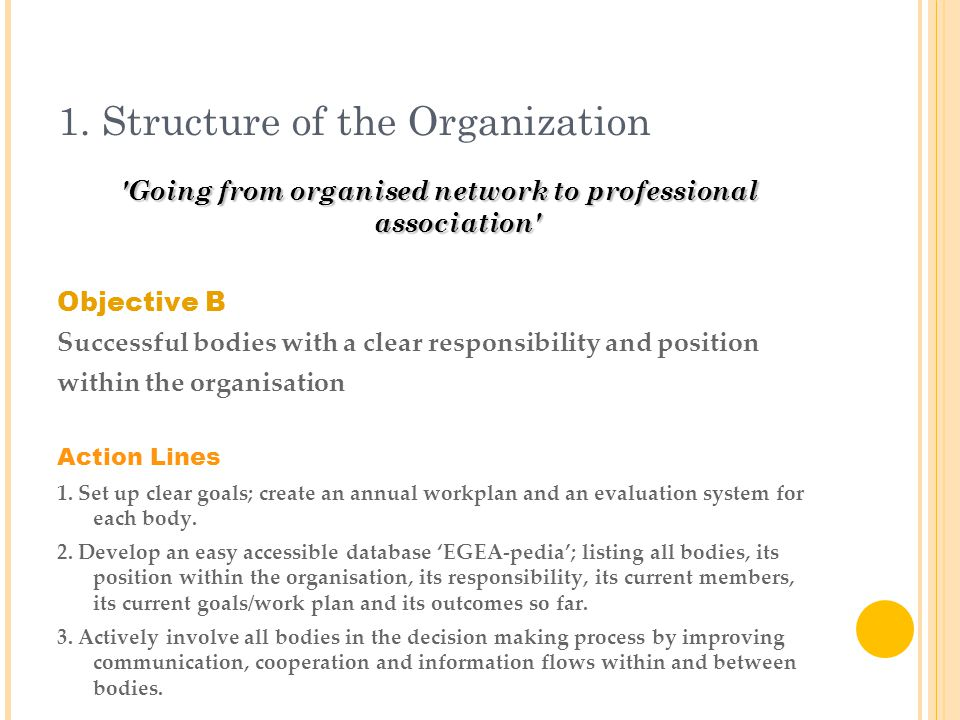 1. Structure of the Organization 'Going from organised network to professional association' Objective B Successful bodies with a clear responsibility