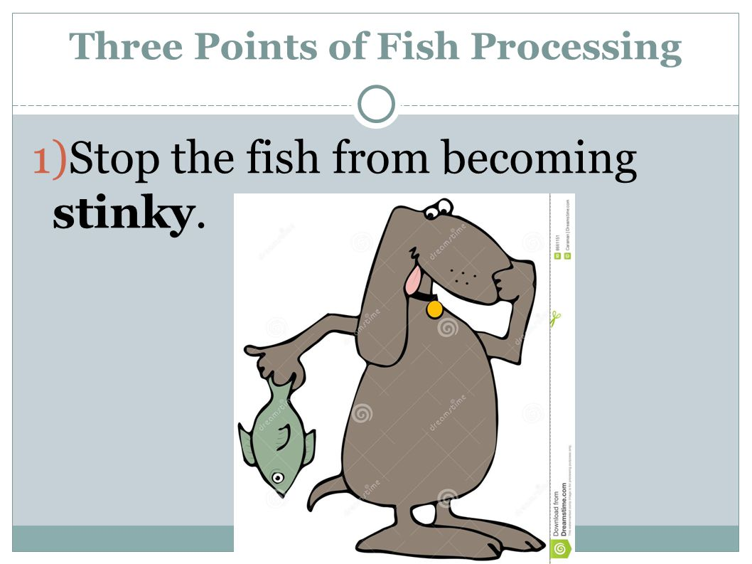 1)Stop the fish from becoming stinky. Three Points of Fish Processing