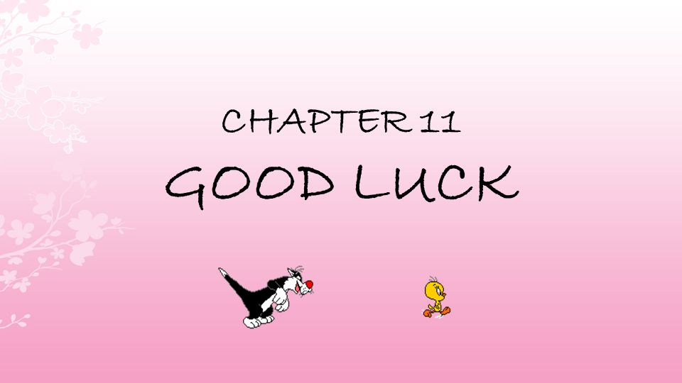 CHAPTER 11 GOOD LUCK