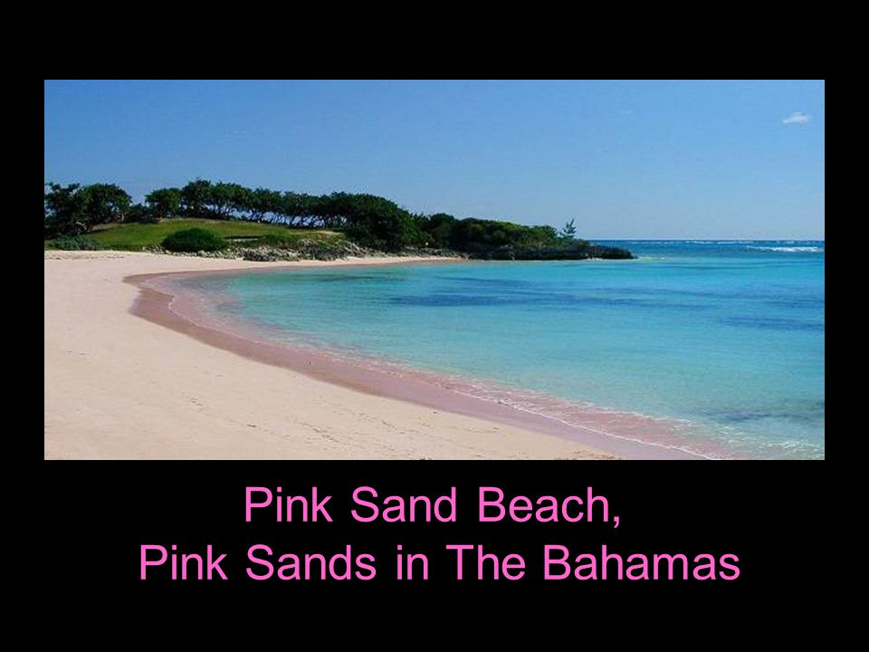 Pink Sand Beach, Pink Sands in The Bahamas