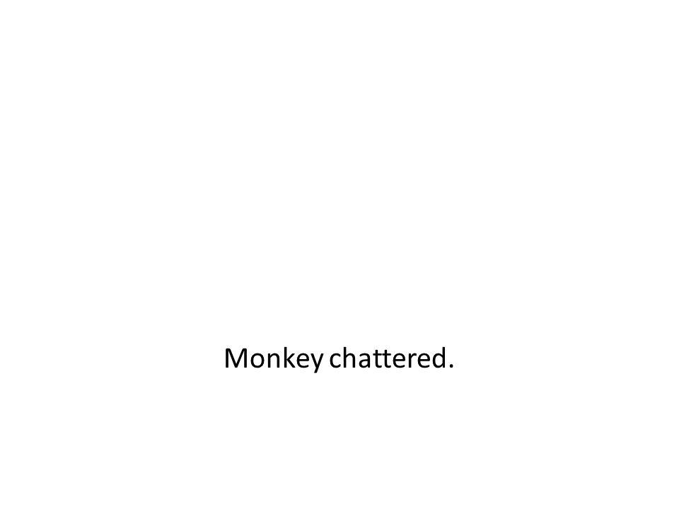Monkey chattered.