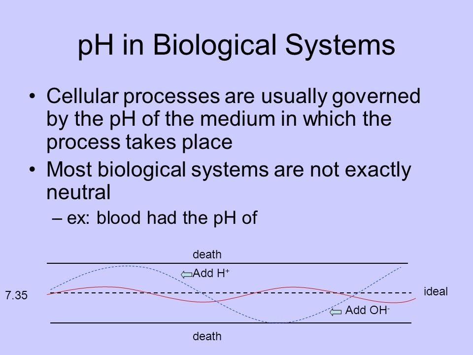 pH in Biological Systems Cellular processes are usually governed by the pH of the medium in which the process takes place Most biological systems are not exactly neutral –ex: blood had the pH of Add OH - Add H + 7.35 ideal death