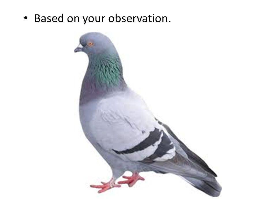 Based on your observation.