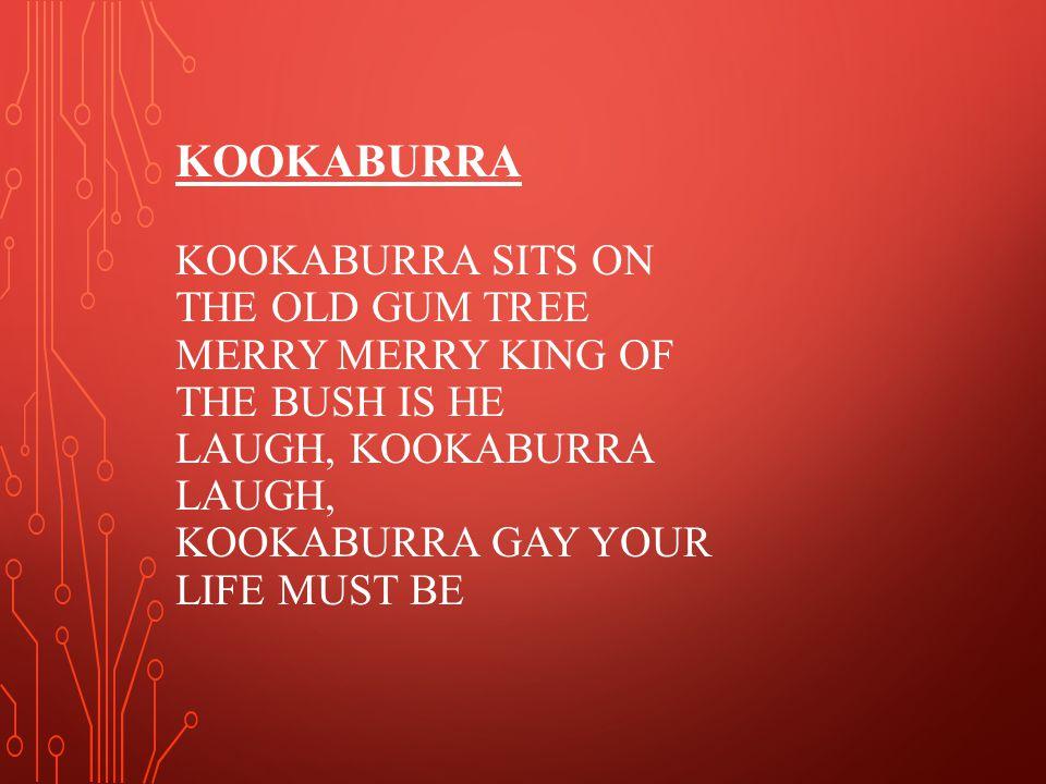 KOOKABURRA KOOKABURRA SITS ON THE OLD GUM TREE MERRY MERRY KING OF THE BUSH IS HE LAUGH, KOOKABURRA LAUGH, KOOKABURRA GAY YOUR LIFE MUST BE