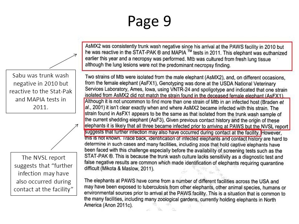 "Page 9 Sabu was trunk wash negative in 2010 but reactive to the Stat-Pak and MAPIA tests in 2011. The NVSL report suggests that ""further infection may"
