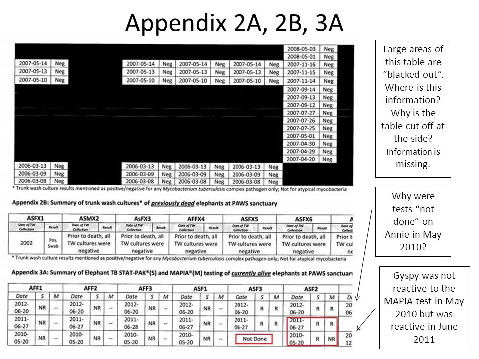 Appendix 2A, 2B, 3A Large areas of this table are blacked out .
