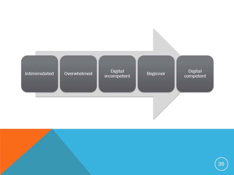 35 IntimimidatedOverwhelmed Digital incompetent Beginner Digital competent