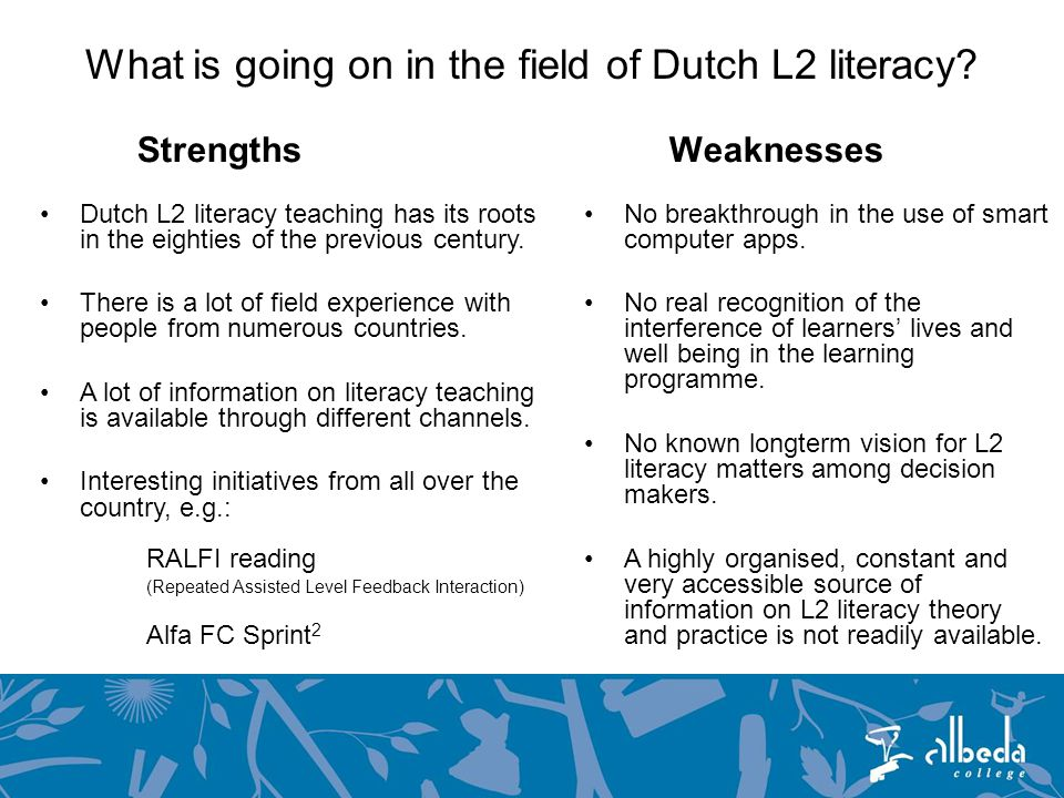 What is going on in the field of Dutch L2 literacy.