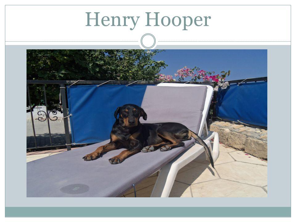Henry Hooper