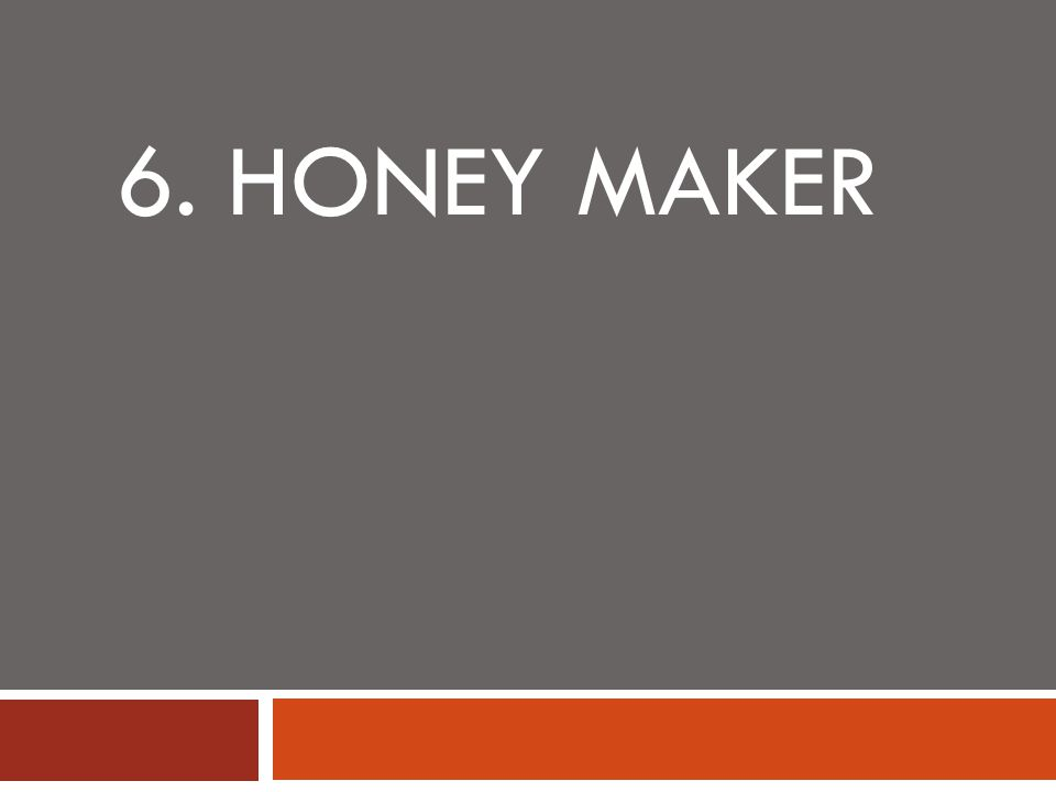 6. HONEY MAKER
