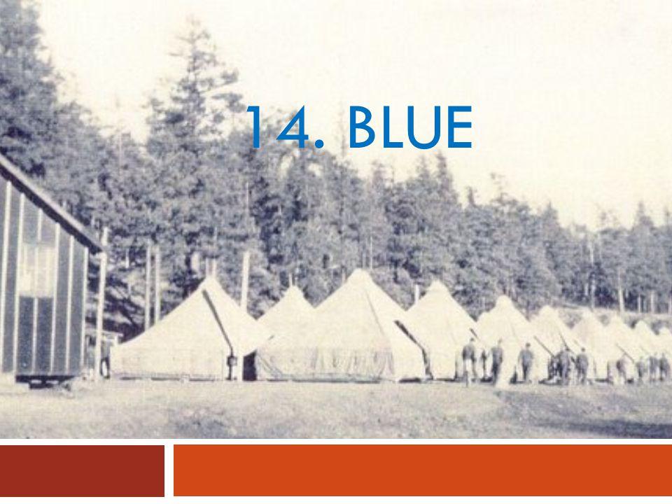 14. BLUE