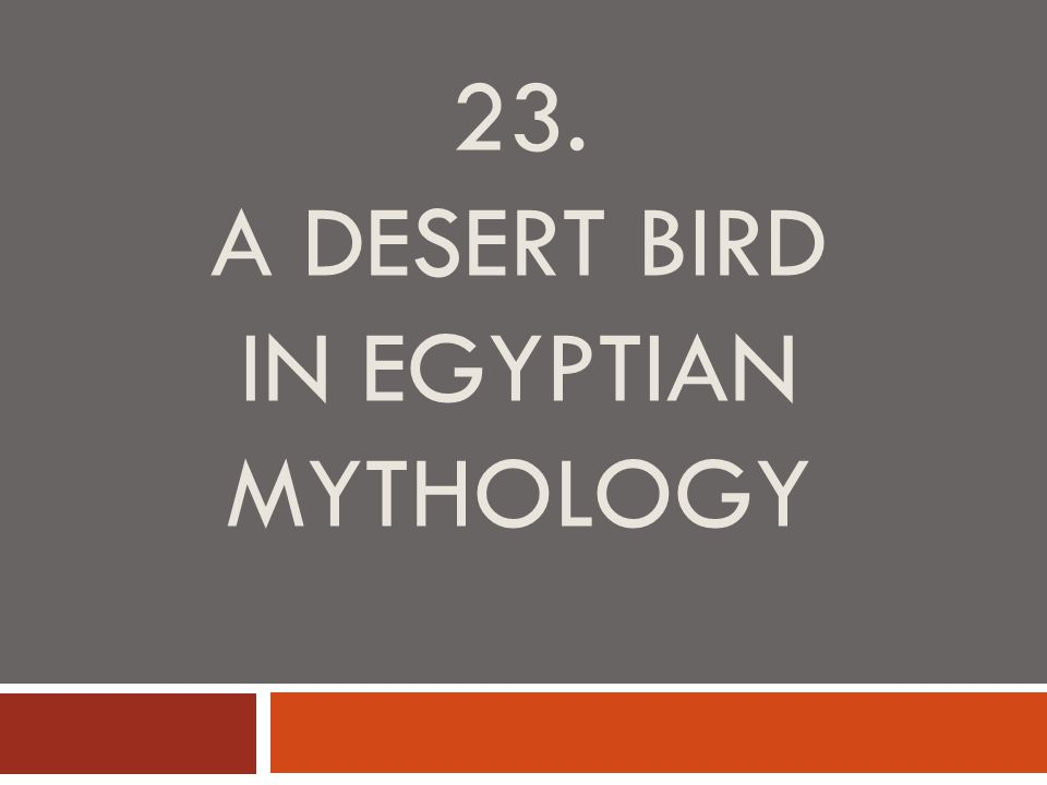 23. A DESERT BIRD IN EGYPTIAN MYTHOLOGY