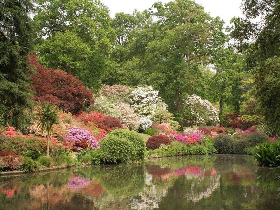 10. Exbury Gardens - New Forest, England