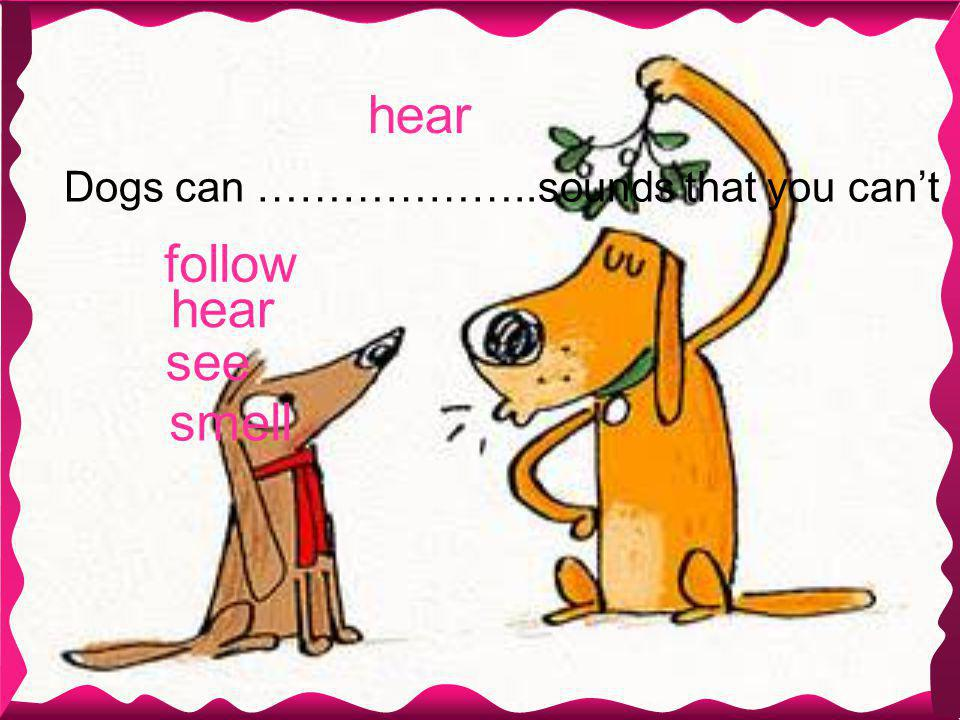 hear Dogs can ………………..sounds that you can't smell hear see follow