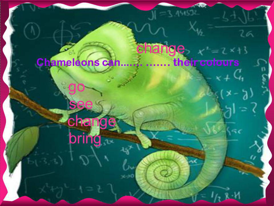 change Chameleons can...…. … …. their colours bring change go see