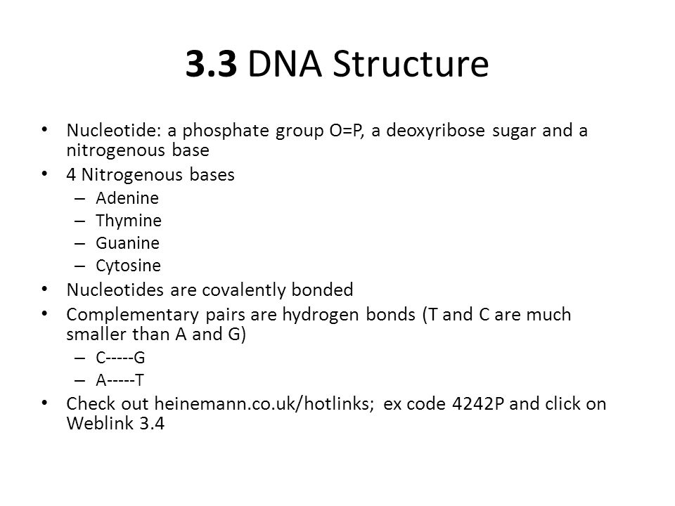 3.3 DNA Structure Nucleotide: a phosphate group O=P, a deoxyribose sugar and a nitrogenous base 4 Nitrogenous bases – Adenine – Thymine – Guanine – Cytosine Nucleotides are covalently bonded Complementary pairs are hydrogen bonds (T and C are much smaller than A and G) – C-----G – A-----T Check out heinemann.co.uk/hotlinks; ex code 4242P and click on Weblink 3.4