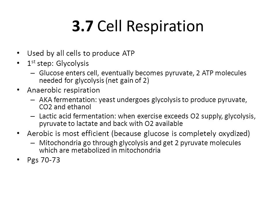 3.7 Cell Respiration Used by all cells to produce ATP 1 st step: Glycolysis – Glucose enters cell, eventually becomes pyruvate, 2 ATP molecules needed for glycolysis (net gain of 2) Anaerobic respiration – AKA fermentation: yeast undergoes glycolysis to produce pyruvate, CO2 and ethanol – Lactic acid fermentation: when exercise exceeds O2 supply, glycolysis, pyruvate to lactate and back with O2 available Aerobic is most efficient (because glucose is completely oxydized) – Mitochondria go through glycolysis and get 2 pyruvate molecules which are metabolized in mitochondria Pgs 70-73