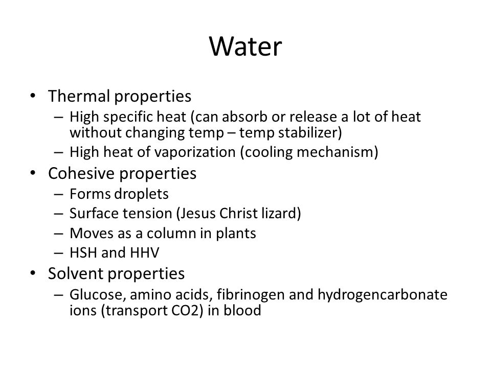Water Thermal properties – High specific heat (can absorb or release a lot of heat without changing temp – temp stabilizer) – High heat of vaporization (cooling mechanism) Cohesive properties – Forms droplets – Surface tension (Jesus Christ lizard) – Moves as a column in plants – HSH and HHV Solvent properties – Glucose, amino acids, fibrinogen and hydrogencarbonate ions (transport CO2) in blood