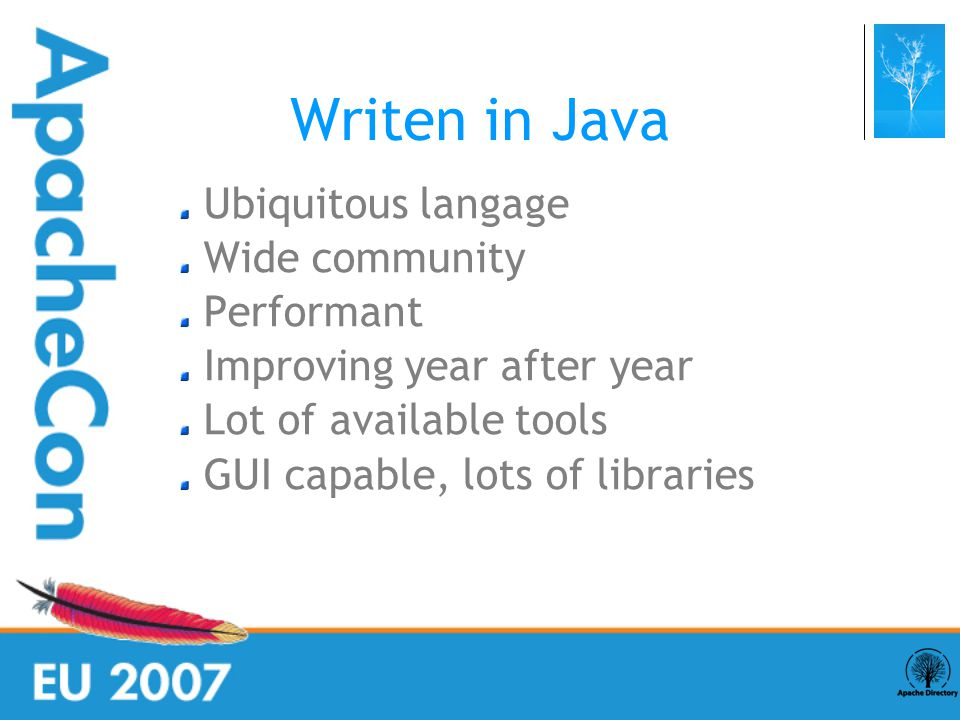 Writen in Java Ubiquitous langage Wide community Performant Improving year after year Lot of available tools GUI capable, lots of libraries