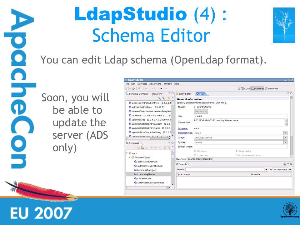 You can edit Ldap schema (OpenLdap format).