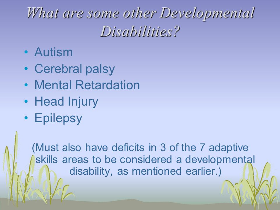 What are some other Developmental Disabilities.
