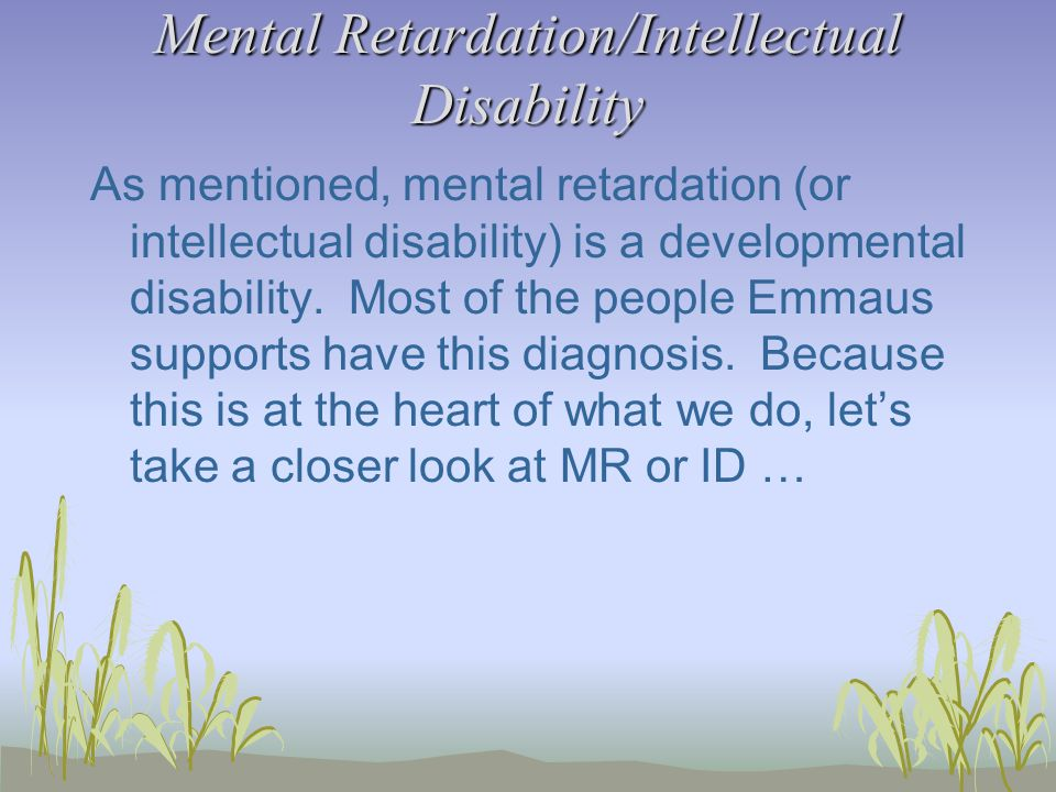 Mental Retardation/Intellectual Disability As mentioned, mental retardation (or intellectual disability) is a developmental disability.