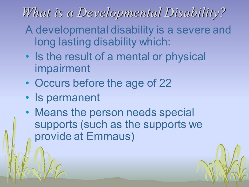 What is a Developmental Disability.