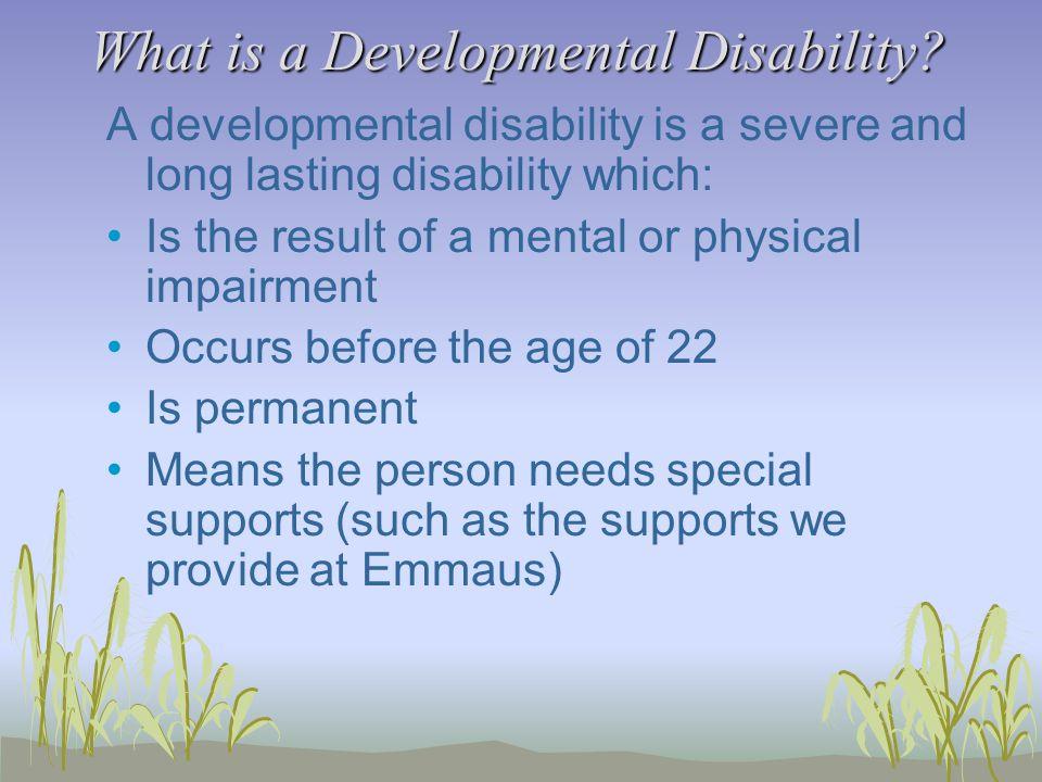 Mental Retardation/Intellectual Disability As mentioned, mental retardation (or intellectual disability) is a developmental disability.