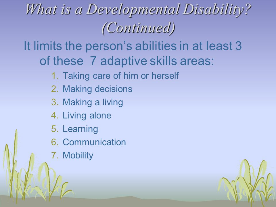 Wrapping It Up If you have further questions regarding developmental disabilities, mental retardation or disability communication and etiquette please contact someone in training or your Support Coordinator!