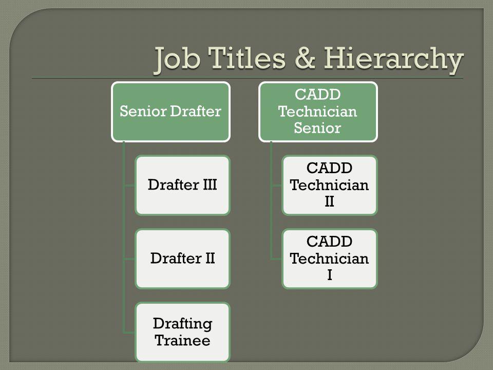 Senior DrafterDrafter IIIDrafter II Drafting Trainee CADD Technician Senior CADD Technician II CADD Technician I