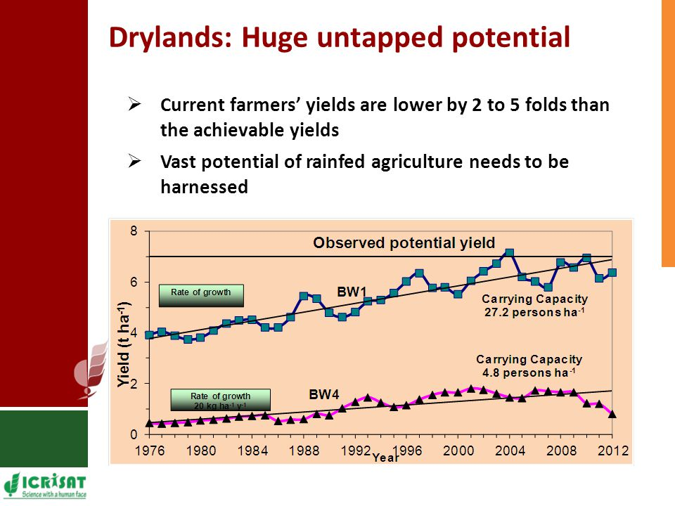 Drylands: Huge untapped potential  Current farmers' yields are lower by 2 to 5 folds than the achievable yields  Vast potential of rainfed agricultu