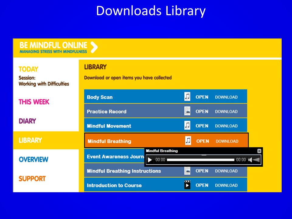 Downloads Library
