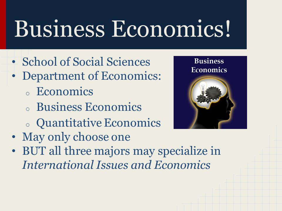 Business Economics.