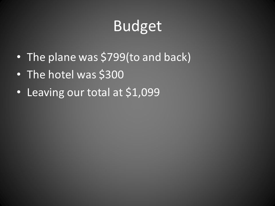 Budget The plane was $799(to and back) The hotel was $300 Leaving our total at $1,099