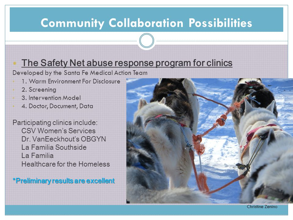 Community Collaboration Possibilities The Safety Net abuse response program for clinics Developed by the Santa Fe Medical Action Team 1.