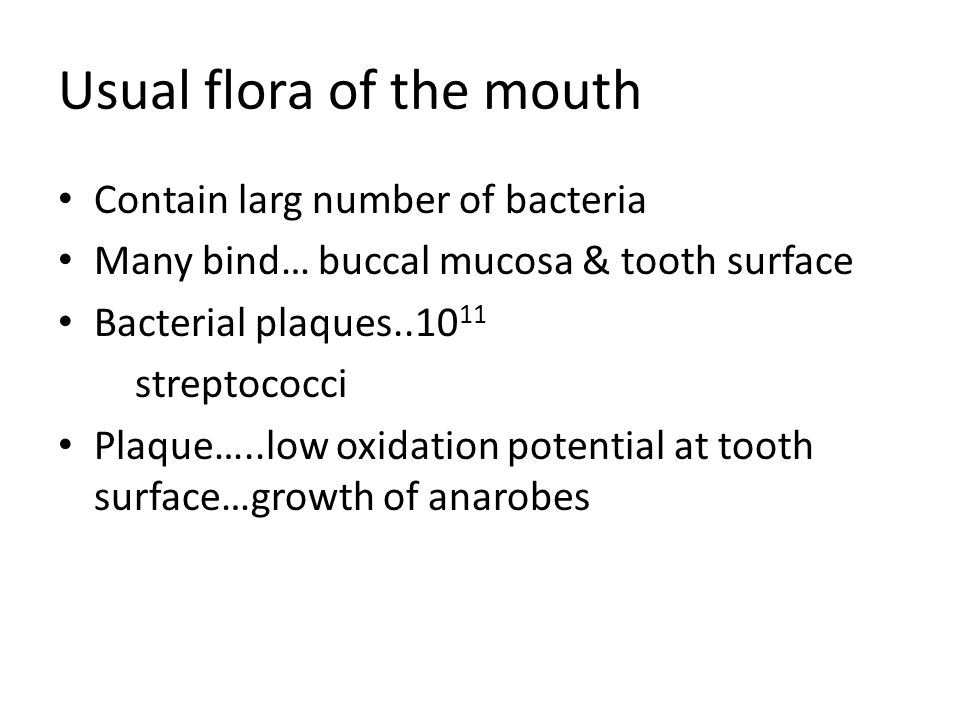 Usual flora of the mouth Contain larg number of bacteria Many bind… buccal mucosa & tooth surface Bacterial plaques streptococci Plaque…..low oxidation potential at tooth surface…growth of anarobes