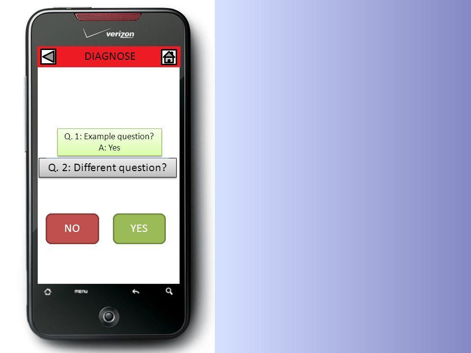 DIAGNOSE Q. 2: Different question. NOYES Q. 1: Example question.