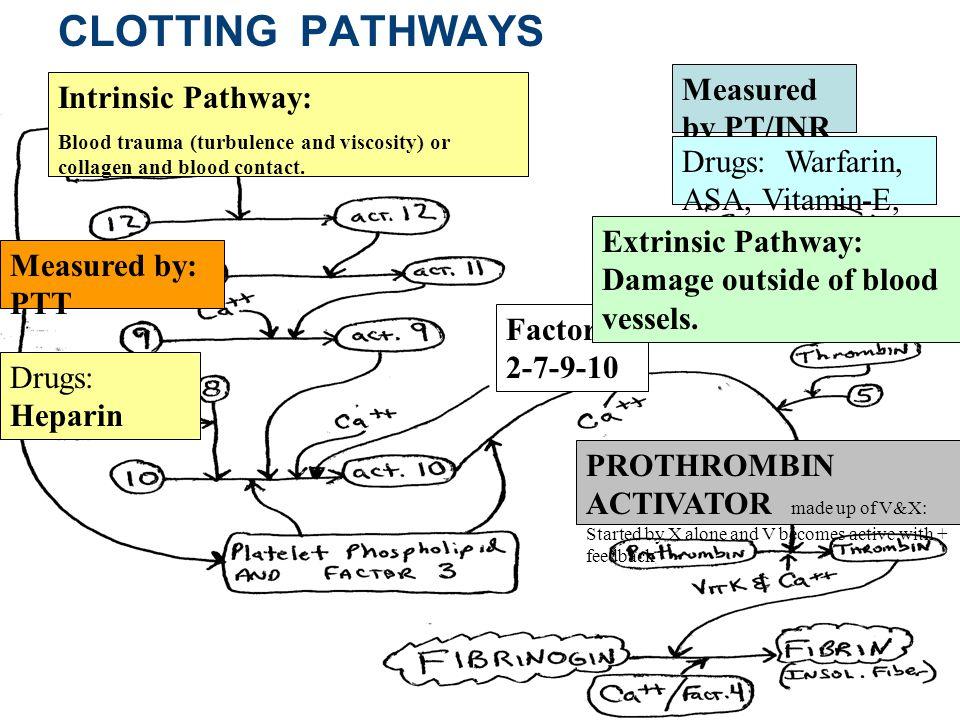 Copyright © 2010 Pearson Education, Inc. Figure 17.15