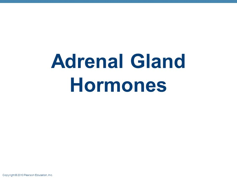 Copyright © 2010 Pearson Education, Inc. Adrenal Gland Hormones