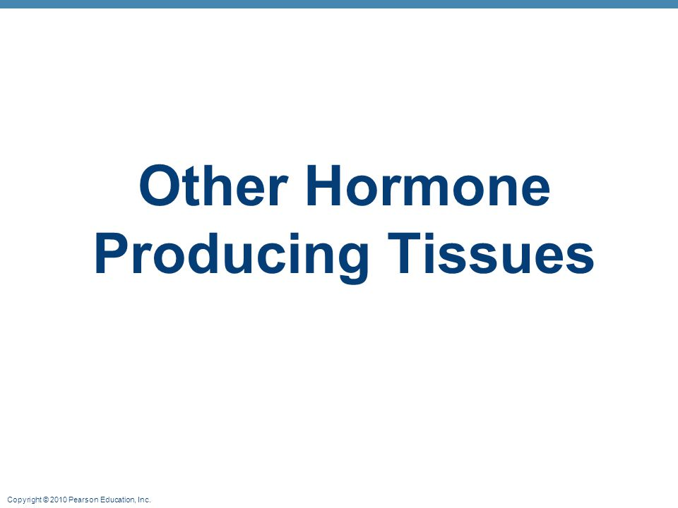 Copyright © 2010 Pearson Education, Inc. Other Hormone Producing Tissues