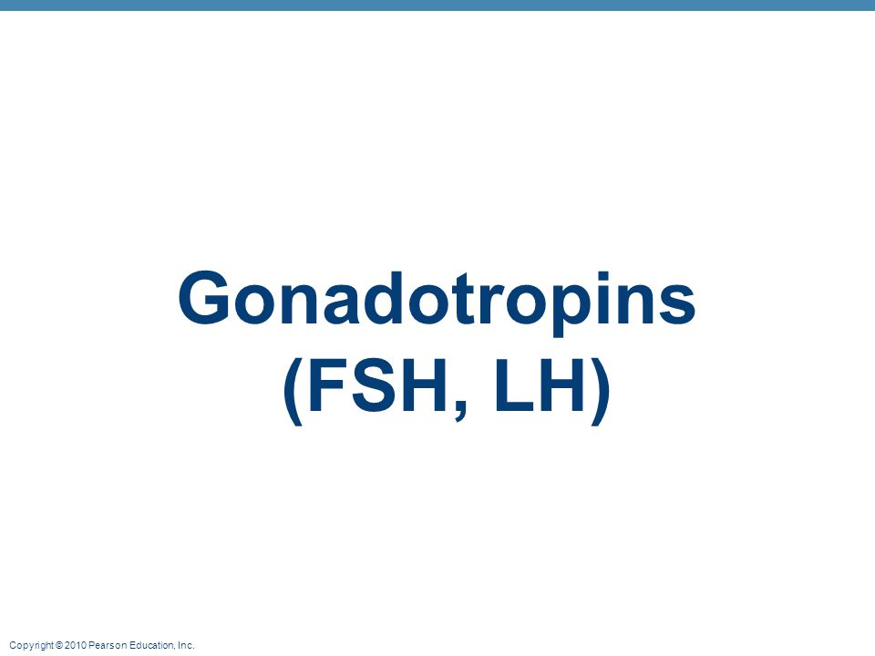 Copyright © 2010 Pearson Education, Inc. Gonadotropins (FSH, LH)