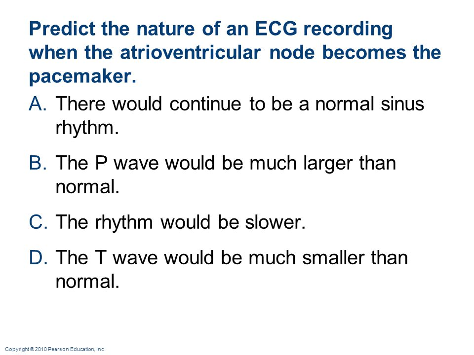 Copyright © 2010 Pearson Education, Inc. Predict the nature of an ECG recording when the atrioventricular node becomes the pacemaker. A.There would co
