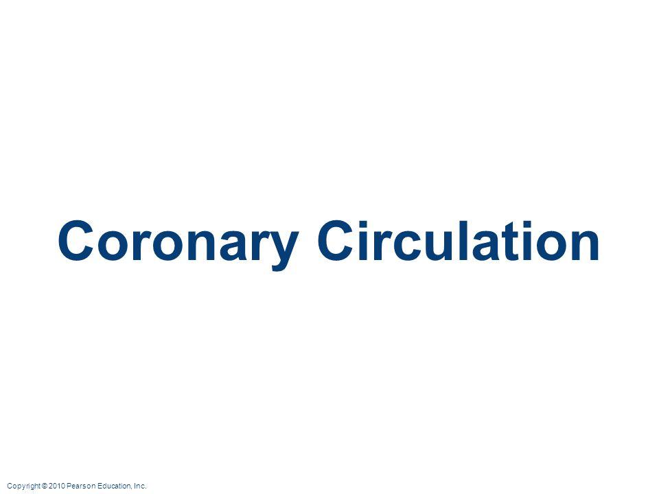 Copyright © 2010 Pearson Education, Inc. Coronary Circulation